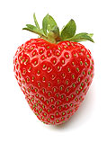 State Fruit - Strawberry