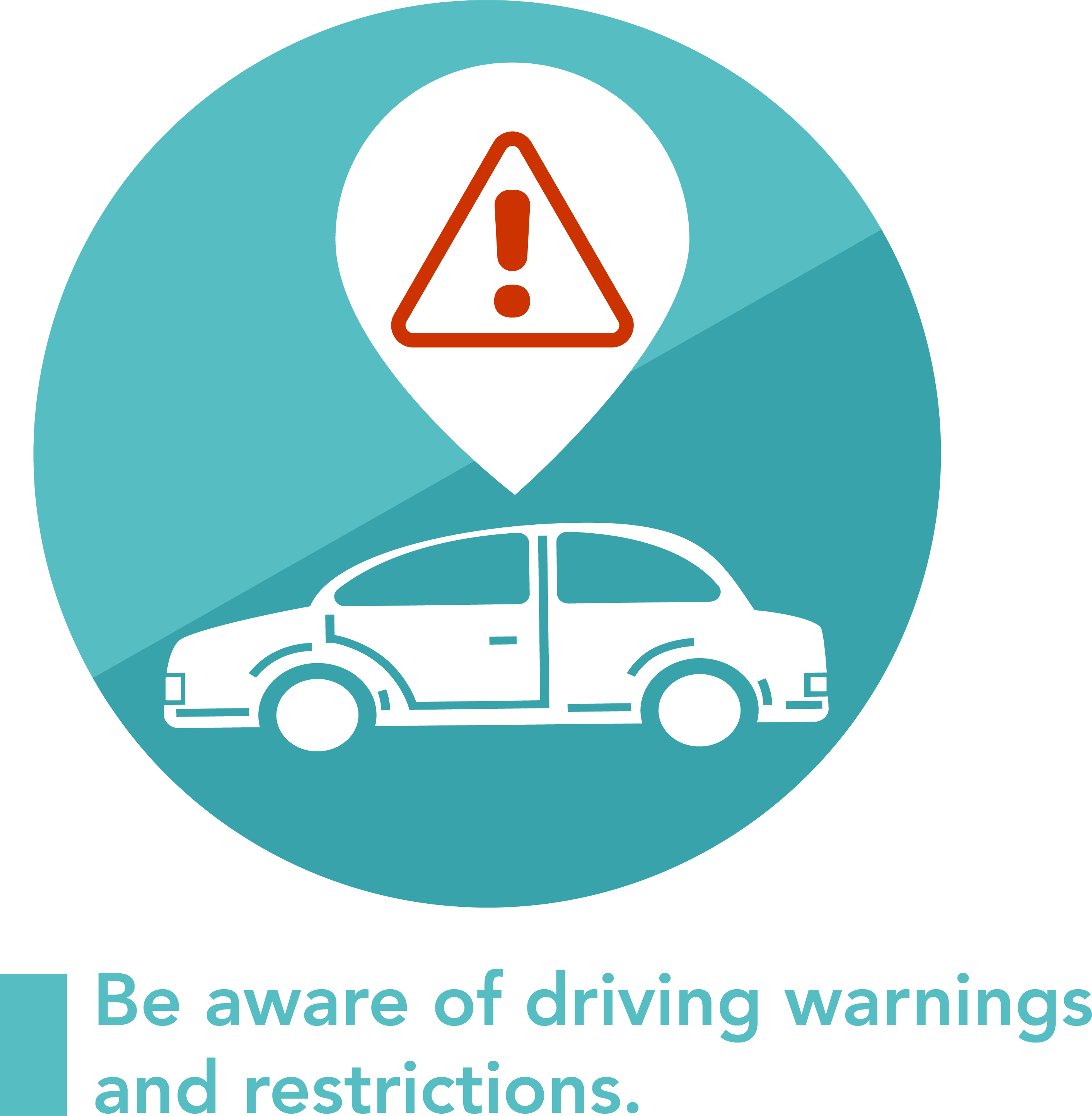 A graphic symbolizng driving warnings and restrictions