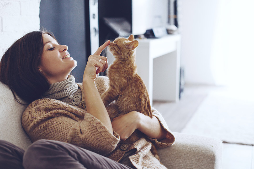 A picture of smiling woman sitting with a cat resting on a sofa